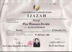 Copy of Diploma certificate