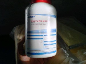 Potato Dextrose Agar (PDA Agar, PDA Potatoes Dextrose Agar, Potato Agar) Culture Media for Fungi